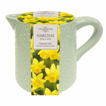 Taylors Bulbs AP47 Ceramic Narcissi Jug available from Strawberry Garden Centre, Uttoxeter