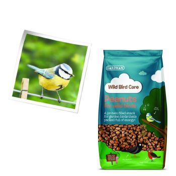 Gardman A01913 Kids Wild Bird Peanuts available from Strawberry Garden Centre, Uttoxeter