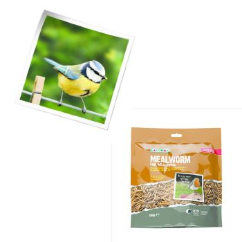 Gardman A04572 mealworm pouch available from Strawberry Garden Centre, Uttoxeter