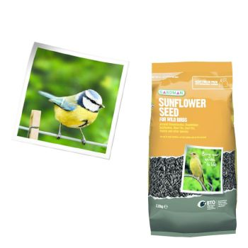 Gardman A06410 Sunflower Seed 2.8kg available from Strawberry Garden Cerntre, Uttoxeter