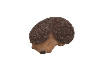 vivid-arts-xrl-hh03-f-sleeping-baby-hedgehog-available-from-strawberry-garden-centre-uttoxeter
