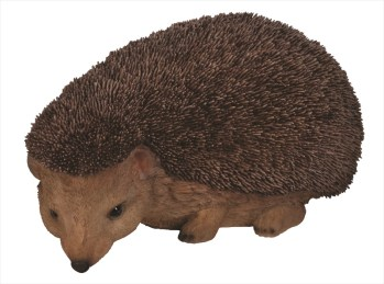 vivid-arts-xrl-hhog-a-hedgehog-available-from-strawberry-garden-centre-uttoxeter