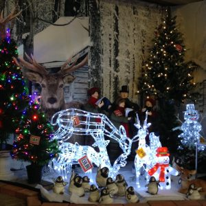 christmas-display-at-strawberry-garden-centre-uttoxeter