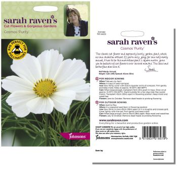 sarah-raven-cosmos-purity-seeds-available-from-strawberry-garden-centre-uttoxeter