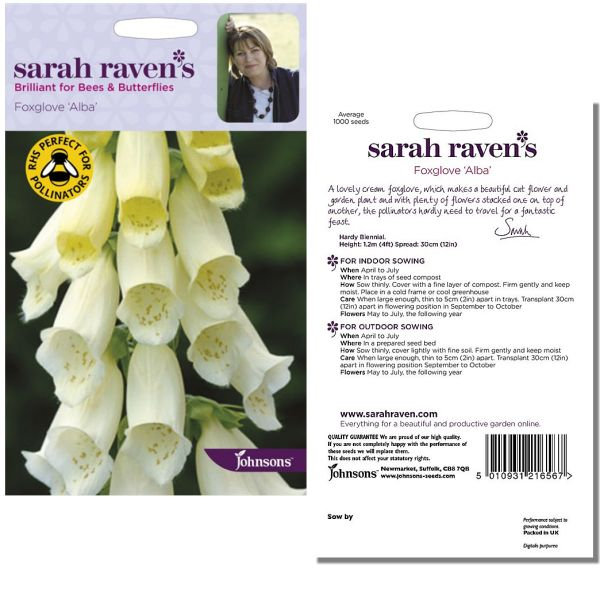 sarah-raven-foxglove-alba-seeds-available-from-strawberry-garden-centre-uttoxeter