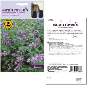sarah-raven-phacelia-tanacetifolia-seeds-available-from-strawberry-garden-centre-uttoxeter