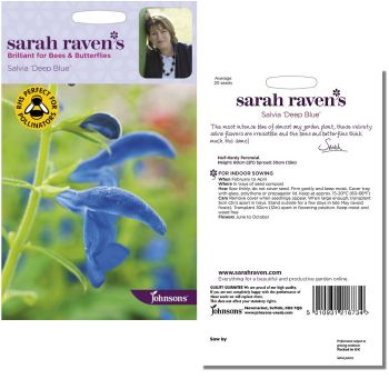 sarah-raven-salvia-deep-blue-seeds-available-from-strawberry-garden-centre-uttoxeter