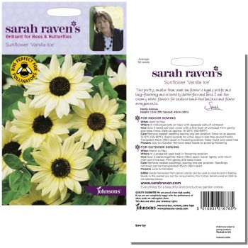 sarah-raven-sunflower-vanilla-ice-seeds-available-from-strawberry-garden-centre-uttoxeter