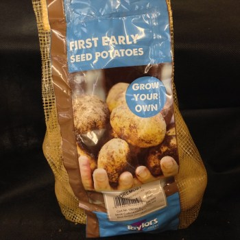 taylors-foremost-first-early-seed-potatoes-available-from-strawberry-garden-centre-uttoxeter