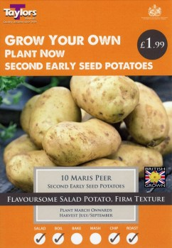 taylors-maris-peer-seed-potatoes-available-from-strawberry-garden-centre-uttoxeter