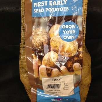 taylors-rocket-first-early-seed-potatoes-available-from-strawberry-garden-centre-uttoxeter