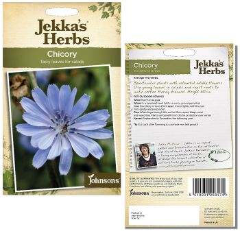 jekkas-herbs-chicory-wild-seeds-available-from-strawberry-garden-centre-uttoxeter