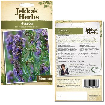 jekkas-herbs-hyssop-seeds-available-from-strawberry-garden-centre-uttoxeter