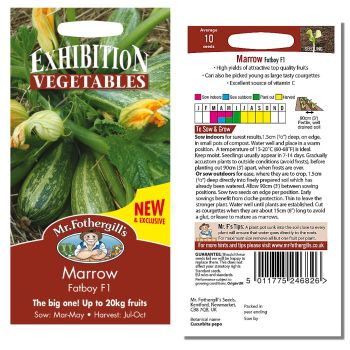 Mr. Fothergill Marrow Fatboy F1 Seeds available from Strawberry Garden Centre, Uttoxeter