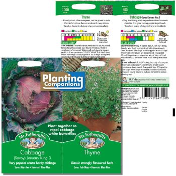 Mr. Fothergill Planting Companions Cabbage January King 3 & Thyme Seeds available from Strawberry Garden Centre, Uttoxeter
