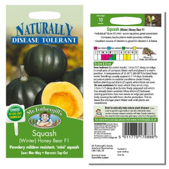 Mr. Fothergill Squash (winter) Honey Bear F1 Seeds available from Strawberry Garden Centre, Uttoxeter