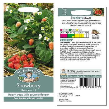 Mr. Fothergill Strawberry Delician F1 Seeds available from Strawberry Garden Centre, Uttoxeter