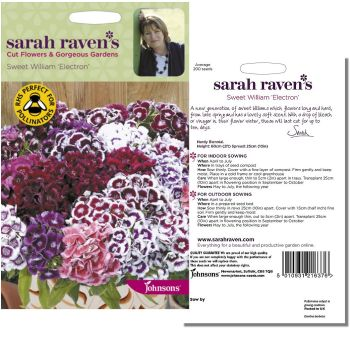 sarah-raven-sweet-william-electron-seeds-available-from-strawberry-garden-centre-uttoxeter