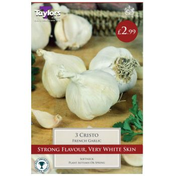Taylors Bulbs sveg9 garlic cristo available from Strawberry Garden Centre, Uttoxeter