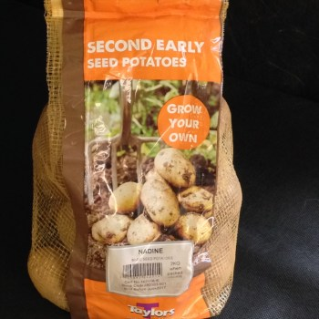 Taylors Nadine Seed Potatoes available from Strawberry Garden Centre, Uttoxeter