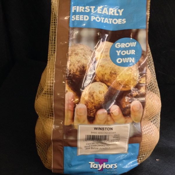 Taylors Winston Seed Potatoes available from Strawberry Garden Centre, Uttoxeter
