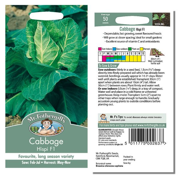Mr. Fothergill Cabbage Hispi F1 Seeds available from Strawberry Garden Centre, Uttoxeter