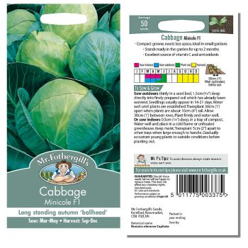 Mr. Fothergill Cabbage Minicole F1 Seeds available from Strawberry Garden Centre, Uttoxeter