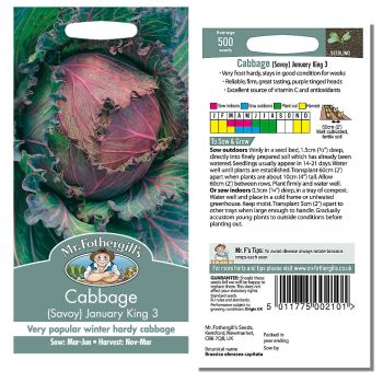 Mr. Fothergill Cabbage Savoy January King 3 Seeds available from Strawberry Garden Centre, Uttoxeter