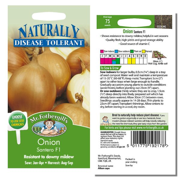 Mr. Fothergill Onion Santero F1 Seeds available from Strawberry Garden Centre, Uttoxeter