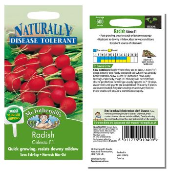 Mr. Fothergill Radish Celesta F1 Seeds available from Strawberry Garden Centre, Uttoxeter