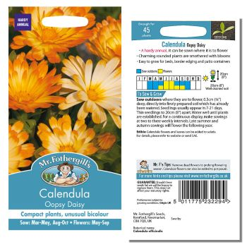 Mr. Fothergill Calendula Oopsy Daisy Seeds available from Strawberry Garden Centre, Uttoxeter