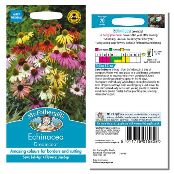 Mr. Fothergill Echinacea Dreamcoat Seeds available from Strawberry Garden Centre, Uttoxeter