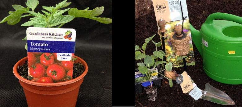 Grow your Own Vegetables available from Strawberry Garden Centre, Uttoxeter banner