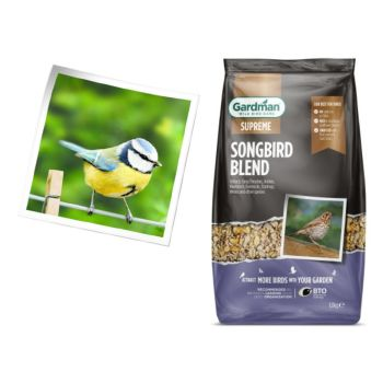 Gardman A06650 Songbird Blend 1.8kg available from Strawberry Garden Centre, Uttoxeter