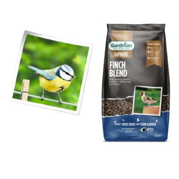 Gardman A06670 Finch Seed Blend 1.8kg available from Strawberry Garden Centre, Uttoxeter