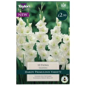 Taylors Bulbs TS164 gladioli fiona available from Strawberry Garden Centre, Uttoxeter