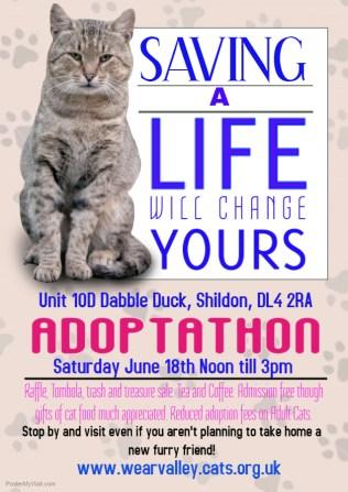 Copy of Adopt a Pet Flyer Template