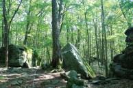 Beartown Rocks 1