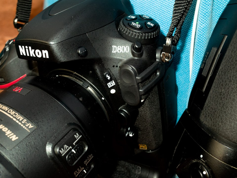 Reynaldo had both the D700 and the D800.