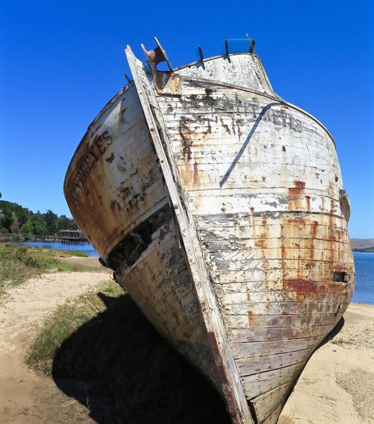 There isn't much of a backstory to the boat, other than it's just someone's old fishing boat that ran aground, and now it's one of those 'must visit' photography locations in Northern California.