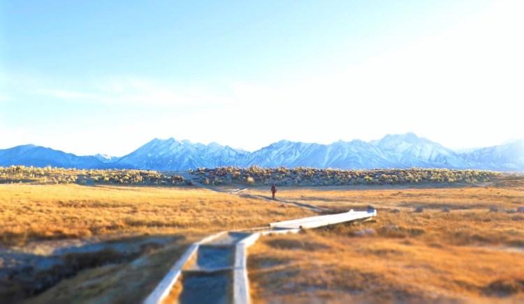 Remain on the boardwalk in order to preserve the fragile desert plain ecosystem.