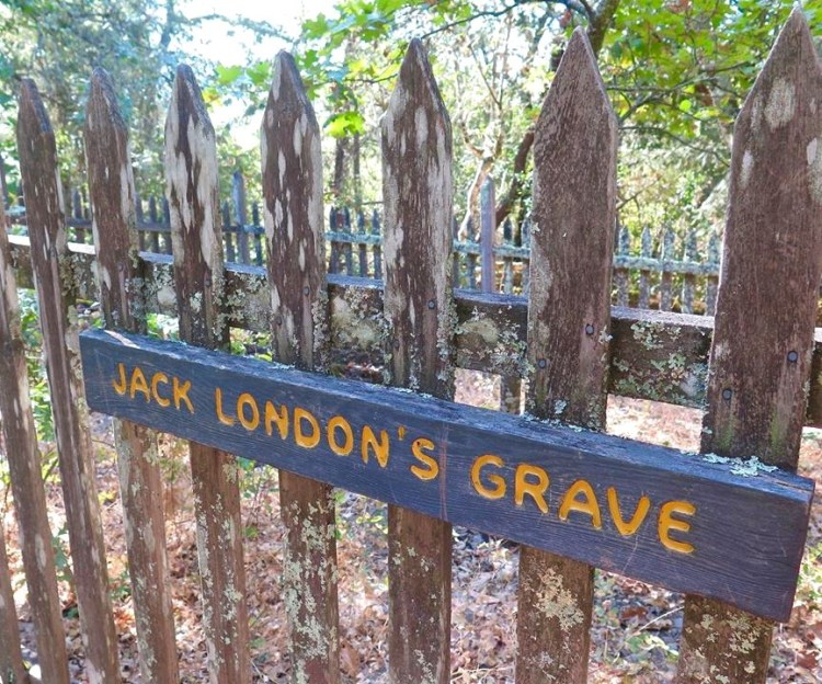 London died November 22, 1916, in a sleeping porch in a cottage on his ranch. London had been a robust man but had suffered several serious illnesses, including scurvy in the Klondike. Additionally, during travels on the Snark, he and Charmian may have picked up unspecified tropical infections. At the time of his death, he suffered from dysentery, late-stage alcoholism, and uremia; he was in extreme pain and taking morphine.