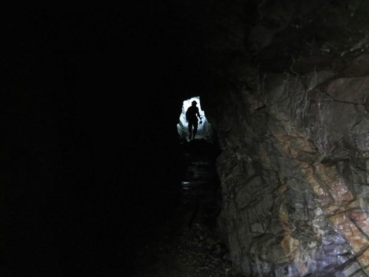 Insane in the Mine Vein