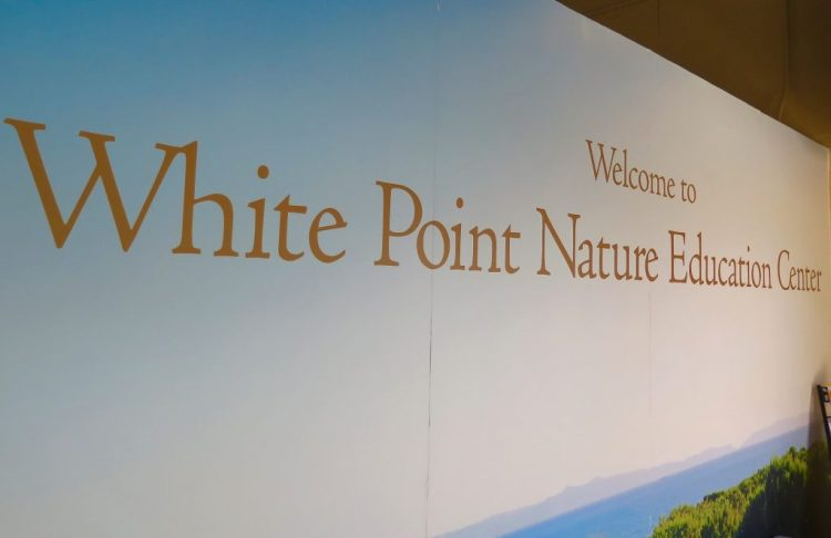 The White Point Nature Preserve features 102 acres of restored coastal sage scrub habitat, hiking and handicap accessible trails overlooking the ocean and Catalina Island.