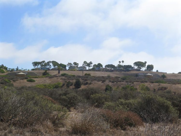 Walking along the many trails that wind there way through the preserve,you'll eventually see them in the distance...