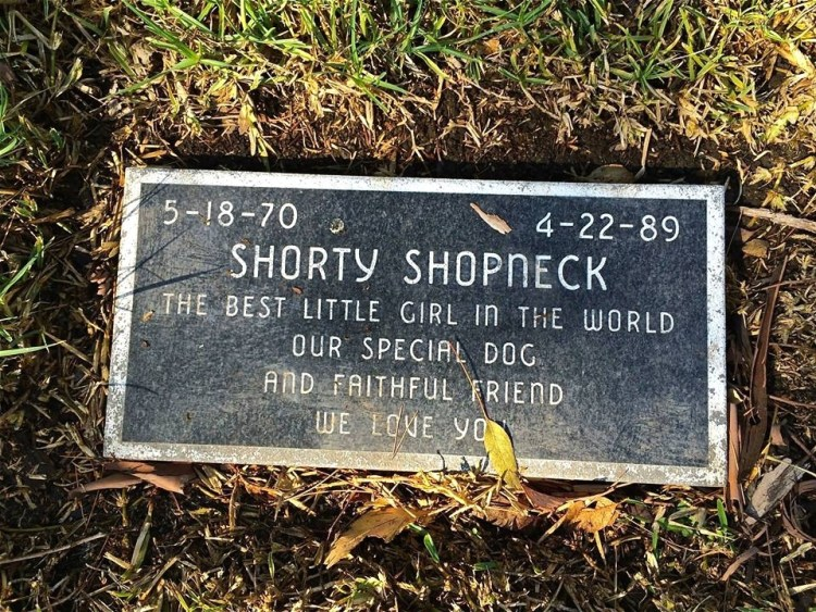 Shorty Shopneck was the best little girl in the world.