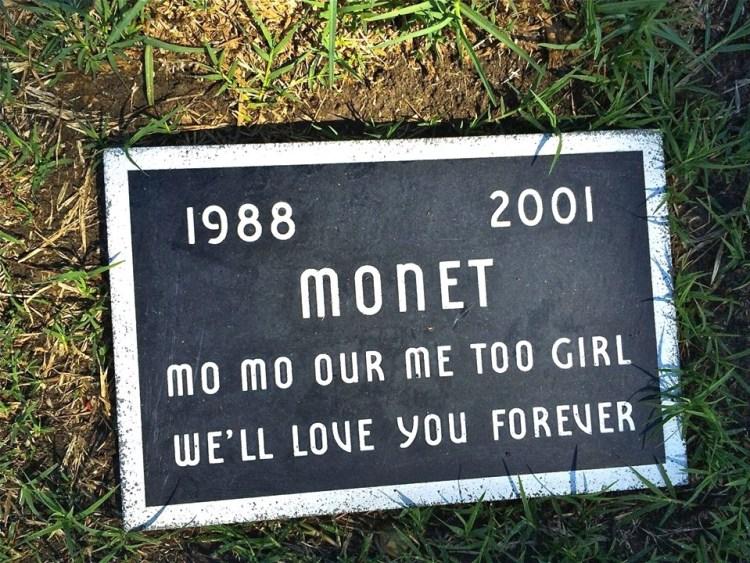 Mo Monet, Mo Problems