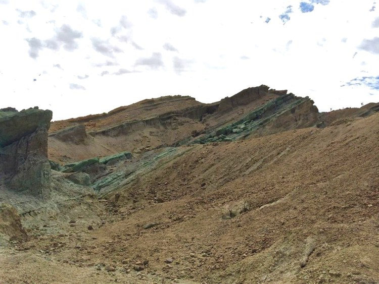 The majority of the fossil beds in Rainbow Basin are found within the sedimentary rocks of the Barstow Formation. They include many animals not found in California today, including camels, horses, mastodons, and flamingos