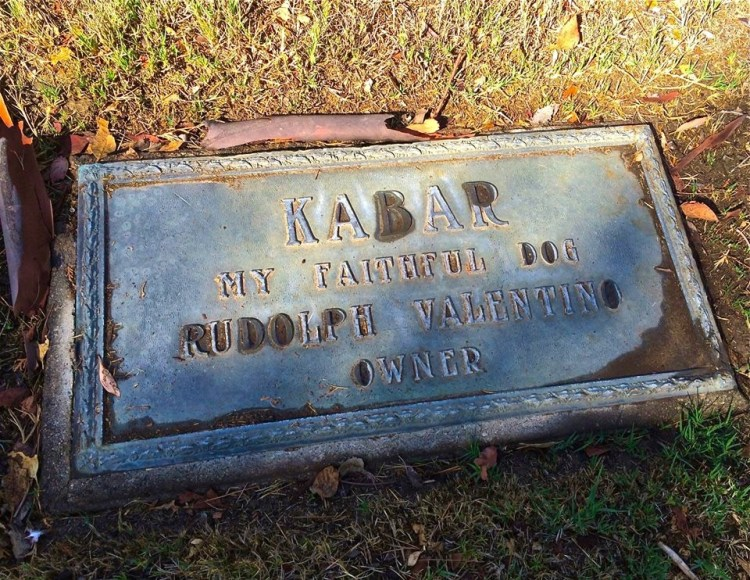 """Kabar was Rudolph Valentino's Doberman Pinscher given to him by a swooning Belgian diplomat. After Valentino's death, it was said that Kabar travelled the country looking for his master, only to return to Valentino's Falcon Crest estate, where he died of a broken heart. Every year, the infamous """"lady in black"""" would supposedly visit Kabar's grave on the same day she visited that of his master at Hollywood Forever Cemetery."""