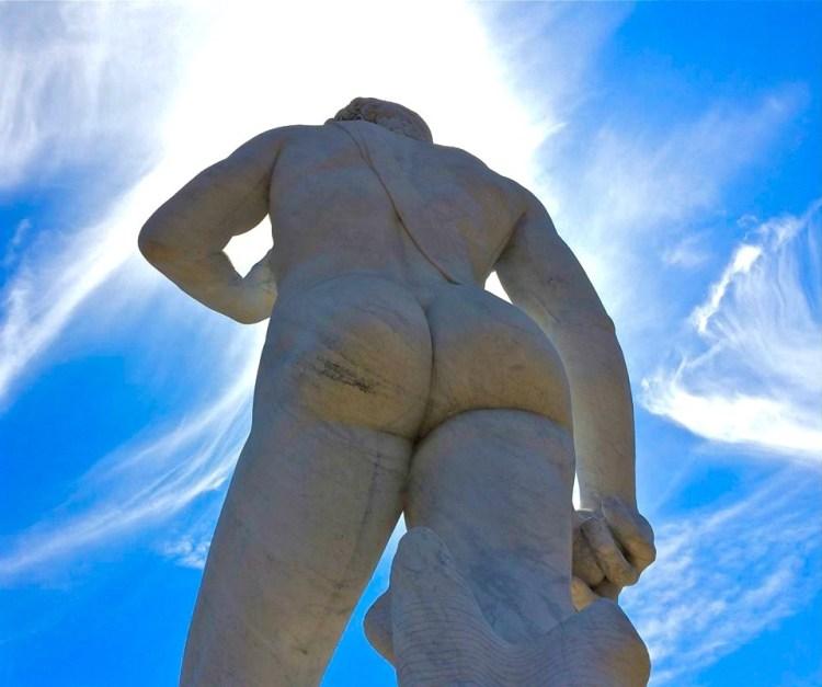 David's Ass